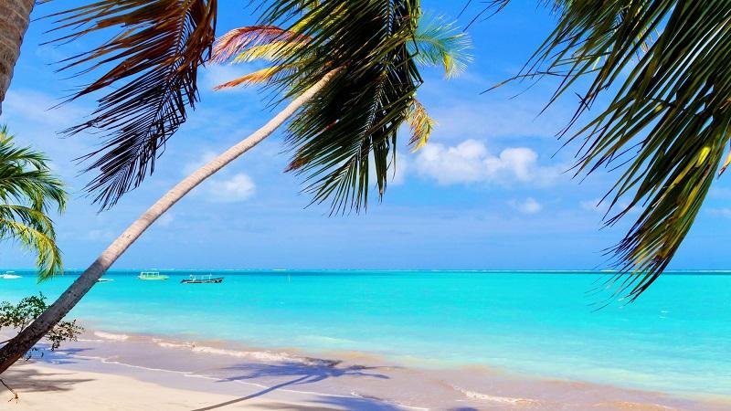 Caribe brasileiro - Maragogi