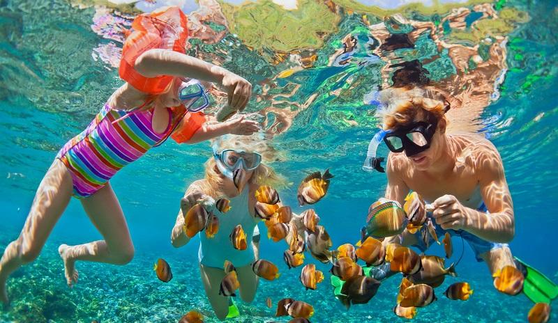 Snorkel em Maragogi e Maceió
