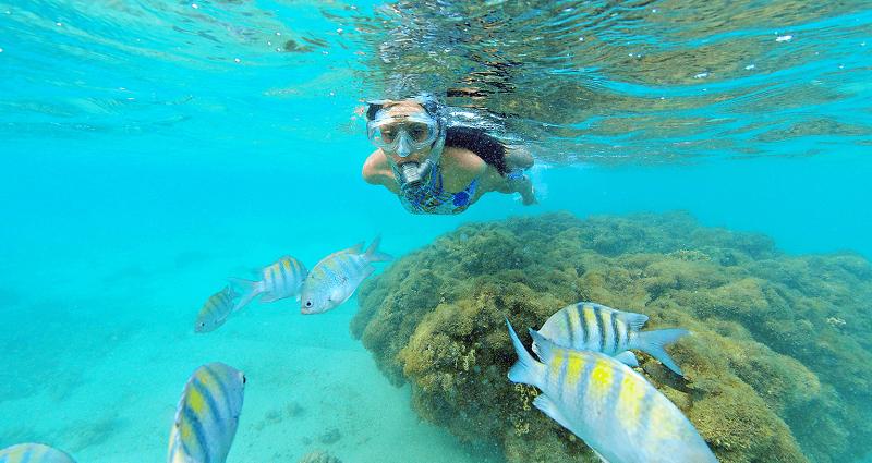 Snorkel nas piscinas naturais de Pajuçara - Maceió